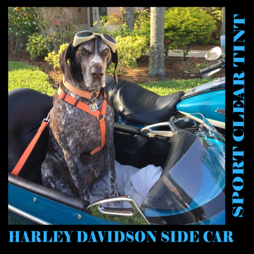 Harley Davidson | Sidecar RLE with 7 Hole Mount