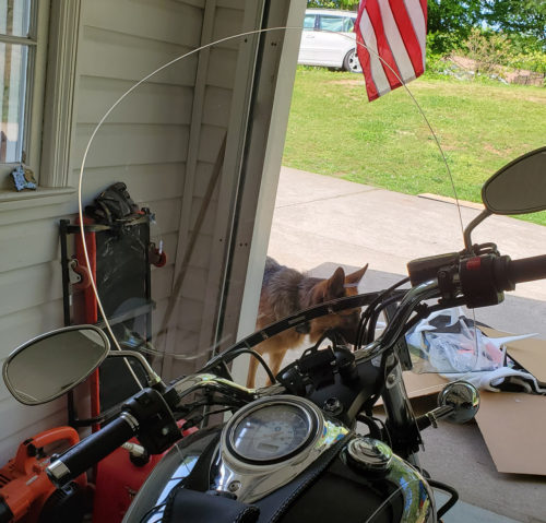 Yamaha V Star 1100 Windshield | V Star 650 Windshield Replacement photo review