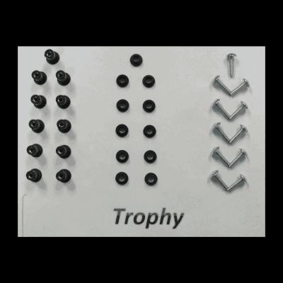 triumph trophy mounting kit