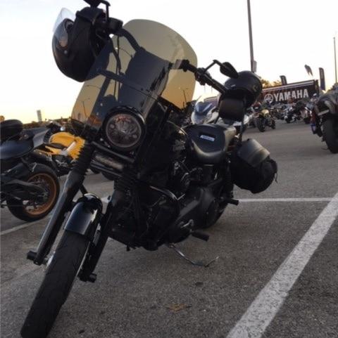 Harley Compact Windshield Albert S 2